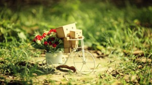 danboard_bicycle_cardboard_robots_flowers_grass_64643_602x339