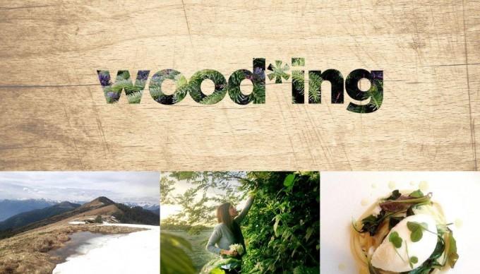wood-ing-680x388